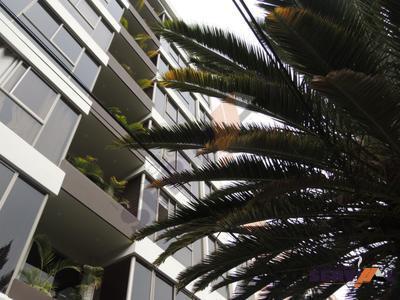 lindo-departamento-en-alquiler-full-proximo-las-islas